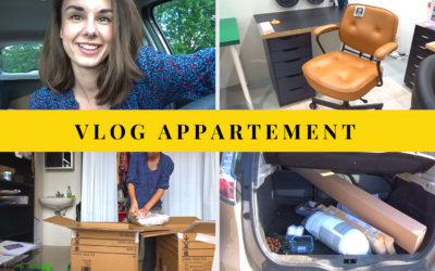 VLOG APPARTEMENT : 1ers cartons & achats mobilier !