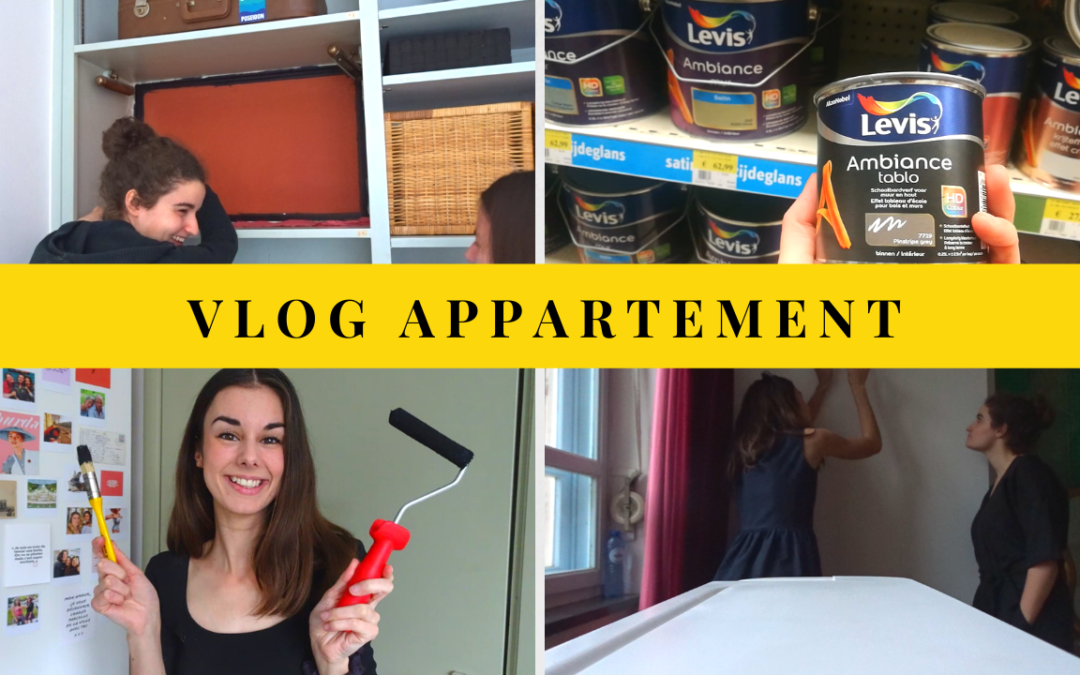 VLOG APPARTEMENT (28 au 30 octobre) : On se met à la PEINTURE ?